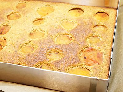 Paleo-Marillenkuchen